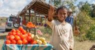 Je nach Region wird an den Straßen unterschiedliches Obst angeboten